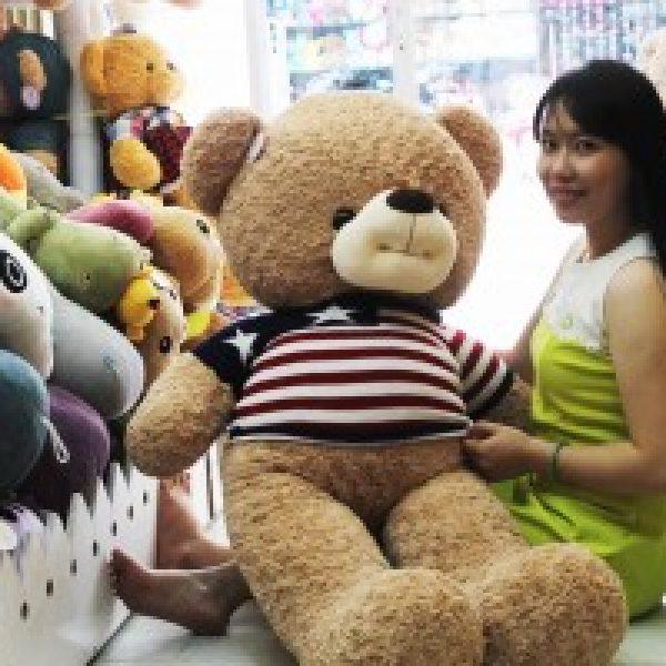 gau-teddy-ma-lun-mac-ao-co-anh-tb081